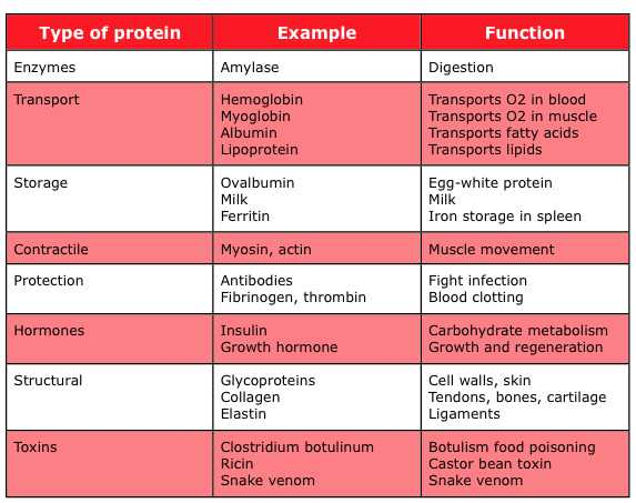 Protein & its Functions
